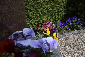 Blomster på Hvalsø Kirkegård