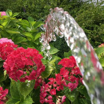 vande-blomster-5