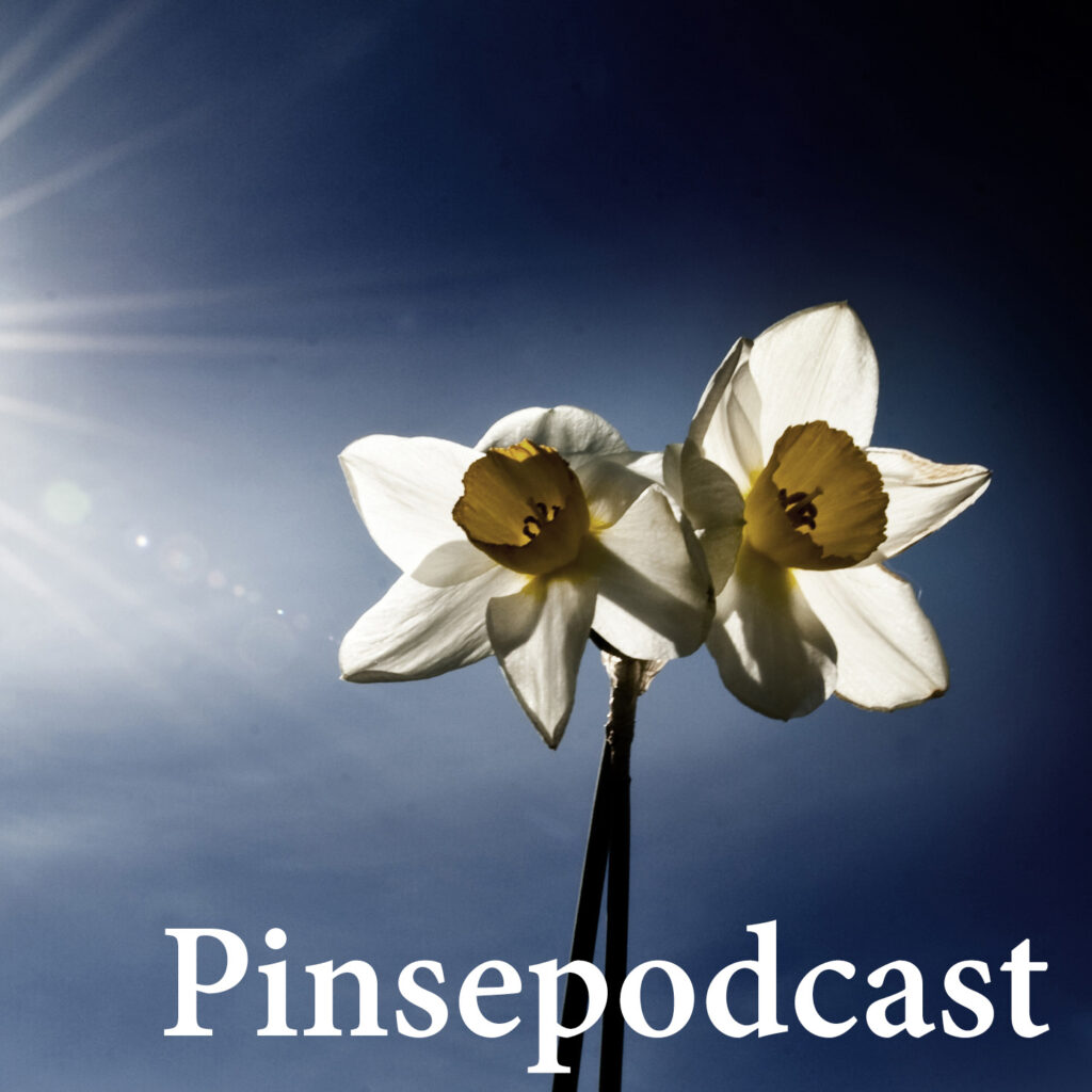 Pinsepodcast